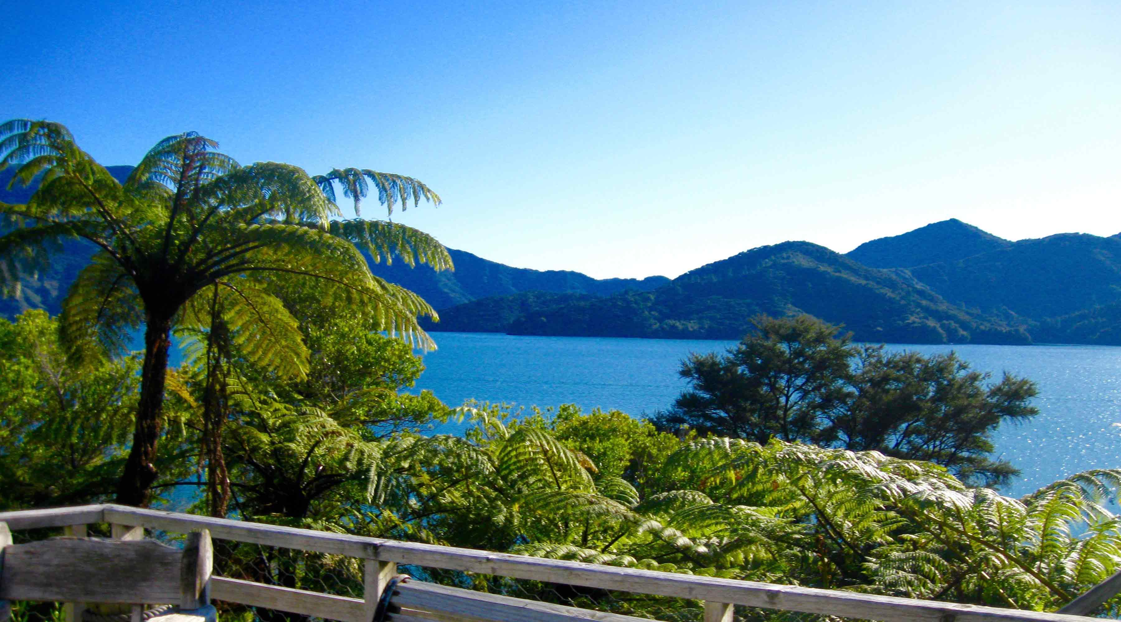 Marlborough Sounds and D'Urville Island Charters